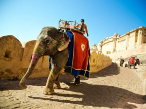 2_Amber-Palace-and-Jaigarh-Fort-Jaipur-500x375