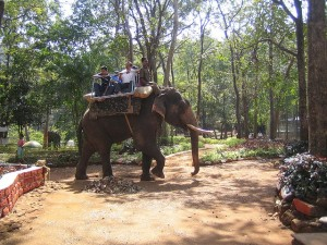 Mahavir Wildlife Sanctuary