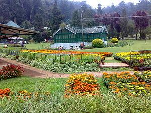 Ooty_botanical_garden