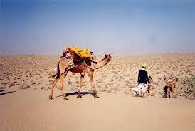 Rajasthan Desert Delight Tour