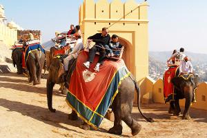 elephant-ride-amber2