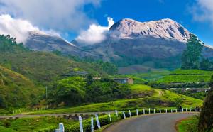 Munnar_hillstation_kerala